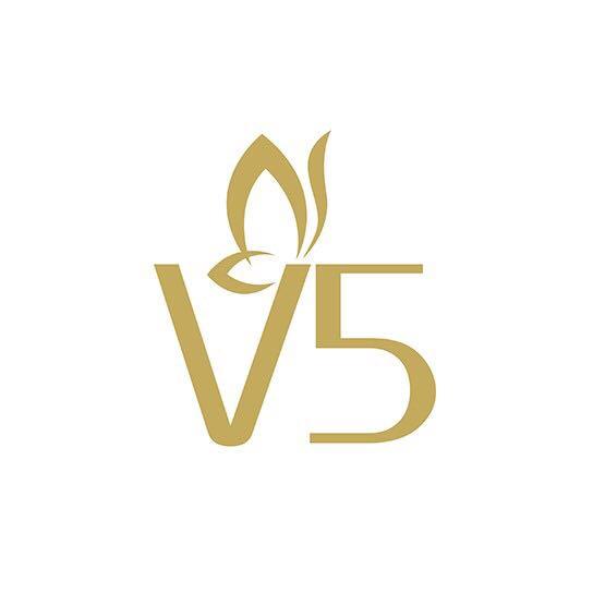 V5蜂浆纸