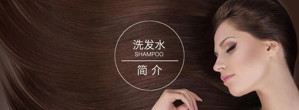 洗发水系列产品介绍