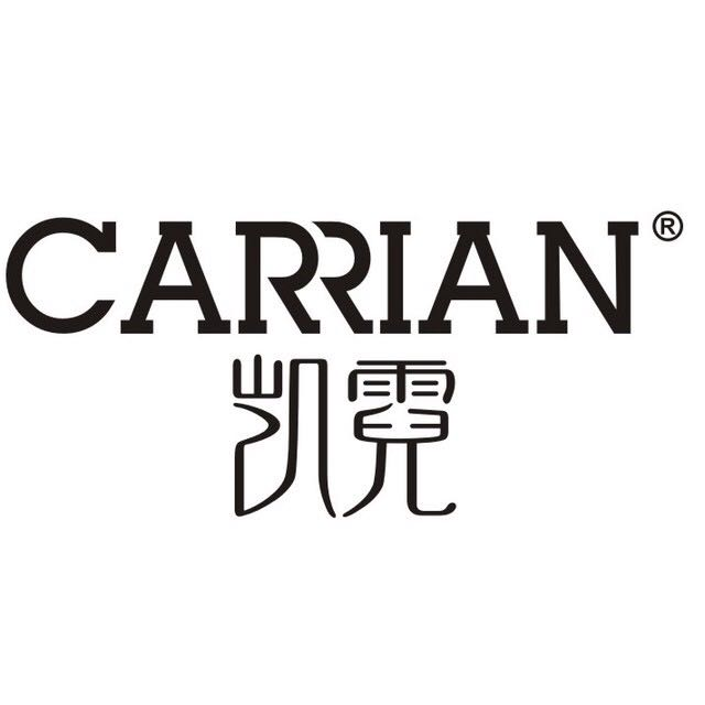 CARRIAN洗衣片